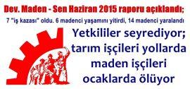 is_kazasi_2015_rapor